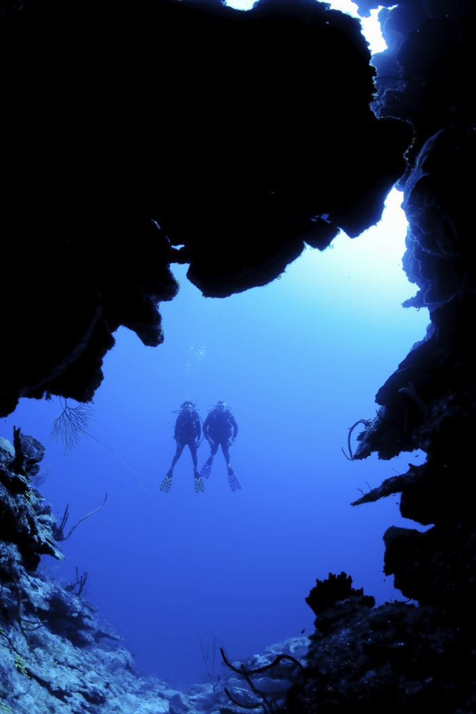 Scuba diving along North Wall, Grand CaymanDive site known as Mainstreet,British West Indies